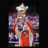 Wimbledon 1979
